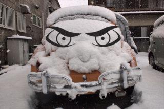 雪だるまを作るのを忘れたから・・・。