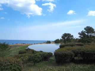 国営ひたち海浜公園はネモフィラの青い丘も良いけど、コッチのエリアは人もいないから ゆっくり出来ていいね。