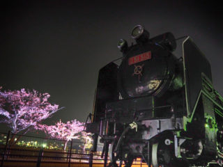 夜桜ライトアップIN千波湖 もう桜は散っちゃったけどね^^;