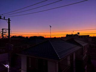今の時期、朝起きるとオレンジと紫のコントラストがキレイ