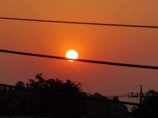 太陽が電線 喰ってる!