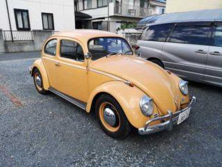 Beetleちゃんでのドライブは最高の季節と相成りました